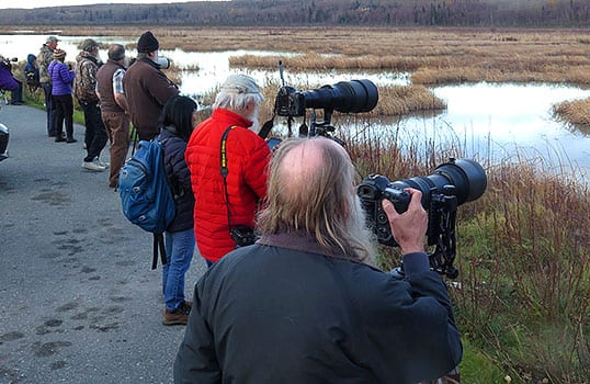 photogs-PotterMarsh-RonLevy-1