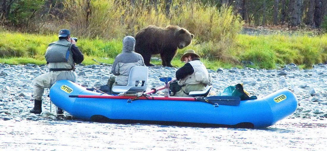 grizzly-fishermen-kenairiver-wildlife-tours-Alaska-Photo-Adventures