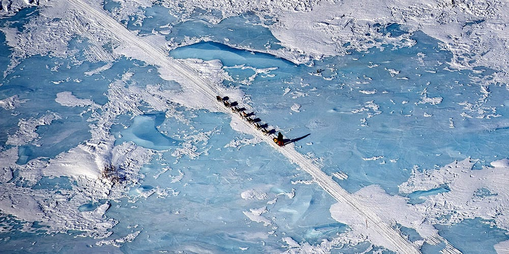 Iditarod dogteam across frozen lake, Alasa