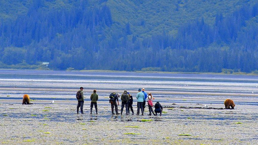 bears-hikers-chinitna-AlaskaPhotoAdventures