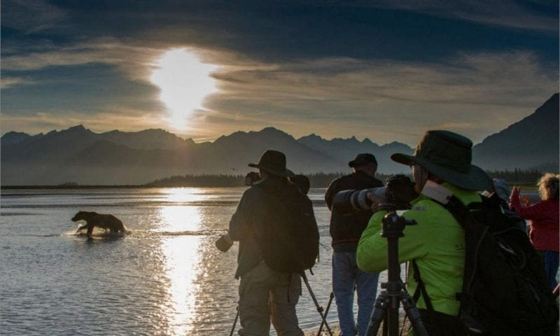 photographers-bear-sunset-GreatAlaska-photograph-wildlife-travel-landscapes-bears-Alaska-Photo-Adventures-tours