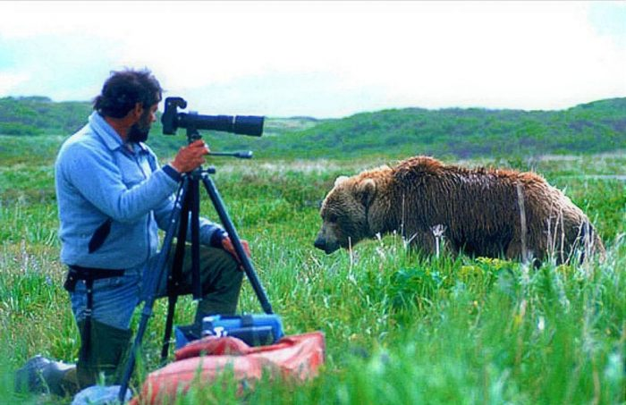 grizzly-bear-photographer